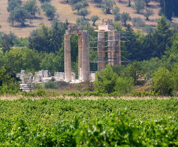 Wine Club: Συνάντηση αφιερωμένη στην «Οινική Πελοπόννησο»!