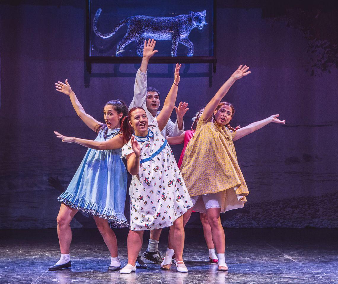 Επιπλέον παραστάσεις για το έργο «Το Καπλάνι της Βιτρίνας» στο Θέατρο Αμαλία